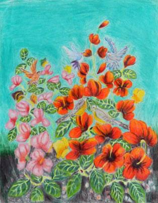 hand-color-pencil-birds-arely-gaytan-portfolio
